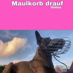 Maulkorb