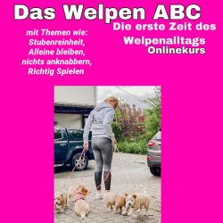 WelpenABC