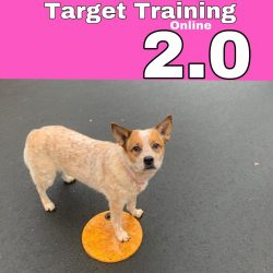 target2online
