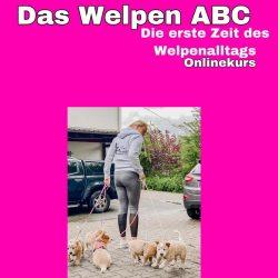 welpen-abc